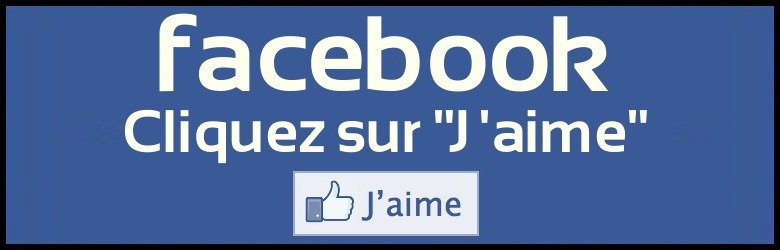 facebook-j-aime.jpg